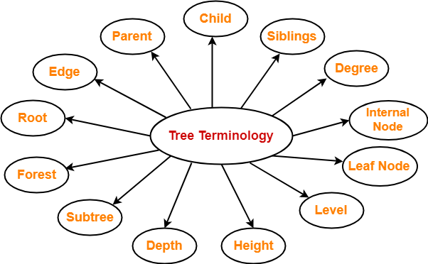 Tree Data Structure | Tree Terminology