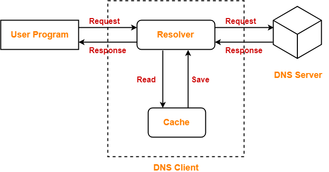 DNS in Networking | DNS Resolution